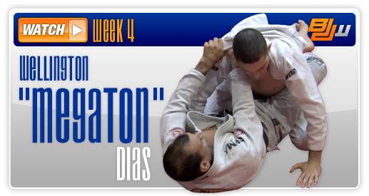 Wellington Megaton Dias